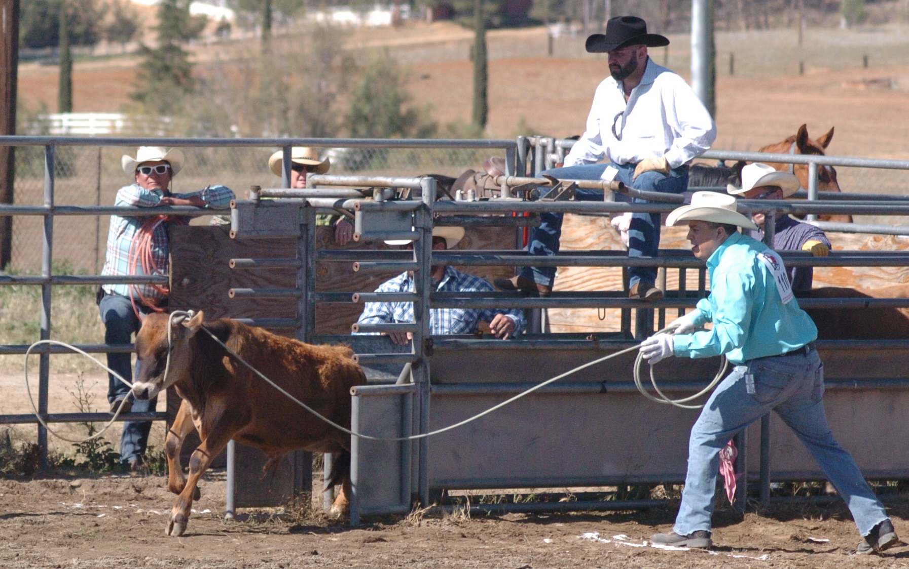 Johnny Sais from TGRA in 2014 Hot Rodeo