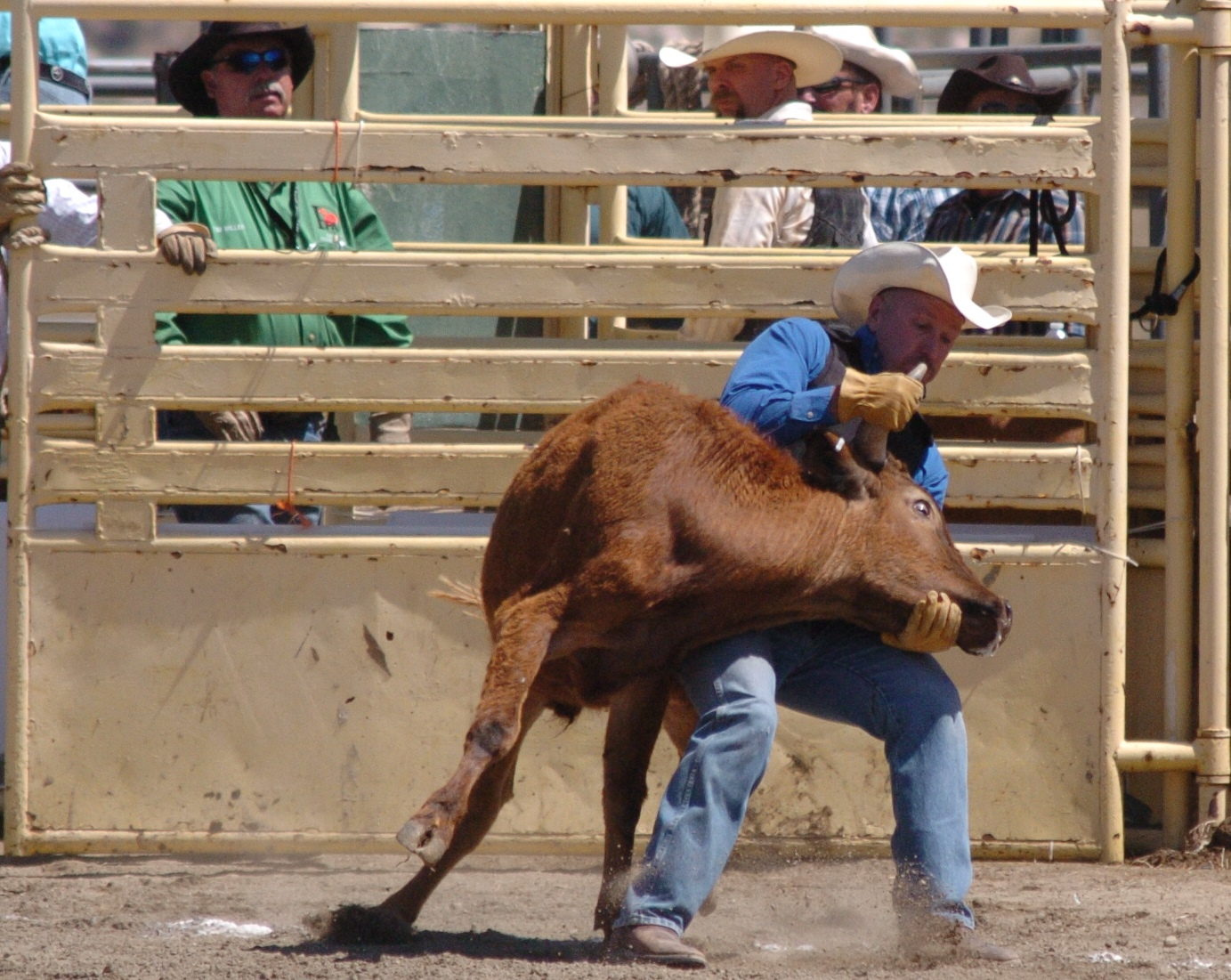 Bruce Casey from GSGRA-GPSC 2014 Hot Rodeo