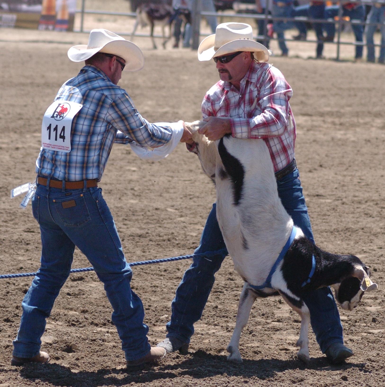 Jeff Rosenberg & Sammy Van Galder from GSGRA-GPSC in 2014 Hot Rodeo