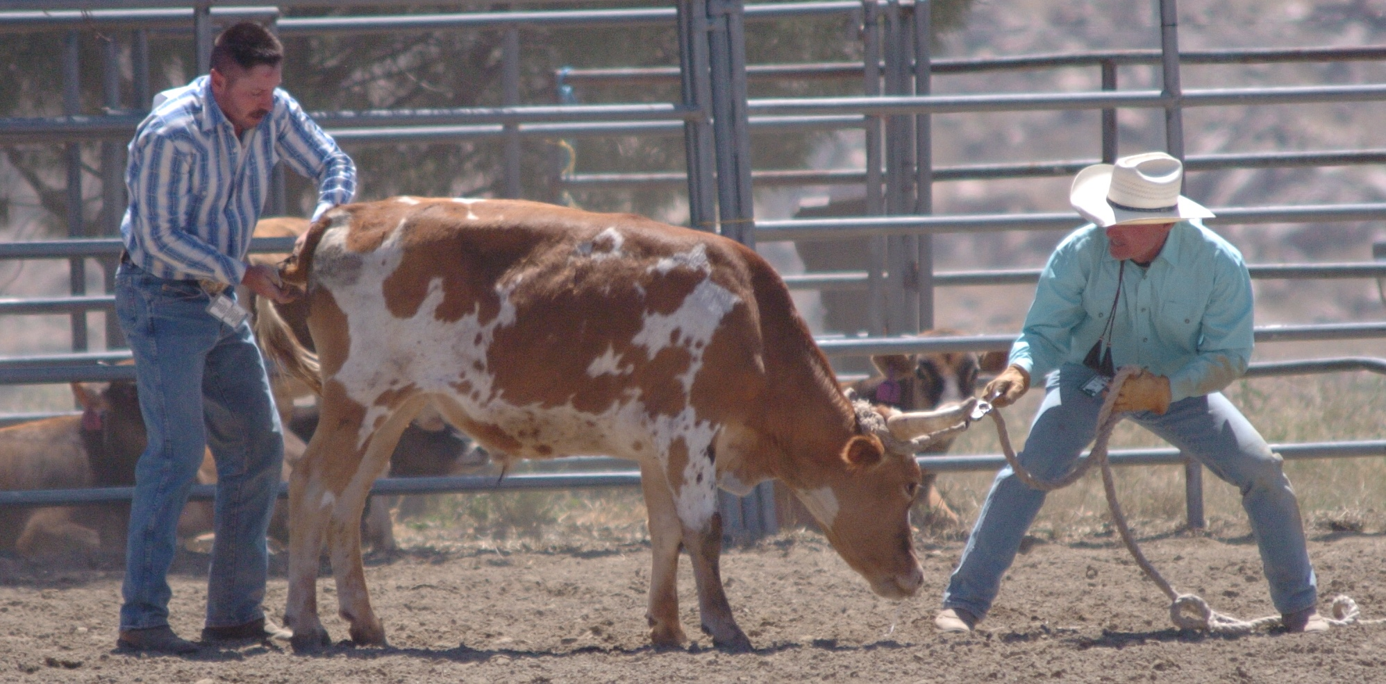 Jody Cap & Kirk Harris from GSGRA-GPSC in 2014 Hot Rodeo