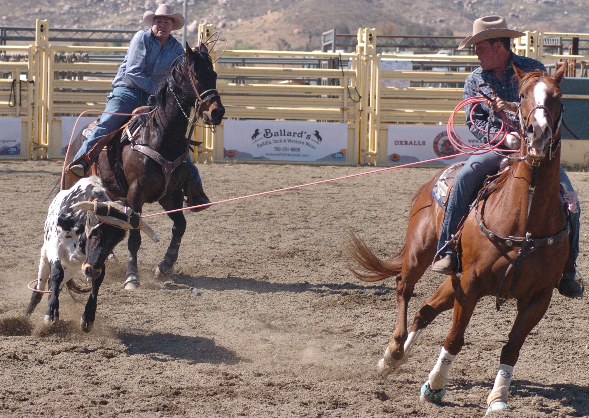 GregB & DavidL from AGRA & GSGRA-BAC in 2014 Hot Rodeo